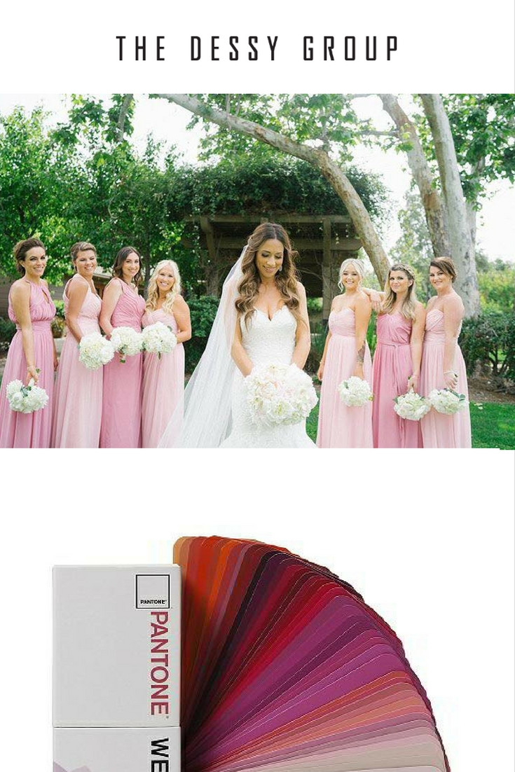 The dessy group the spot for all things bridesmaid bridesmaid dresses above by dessy styles and colors 2906 carnation 2908 blush 2905 carnation 2882 blush 2928 blush 6678 carnation 2896 blush ombrellifo Image collections